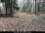 10-Deer Trail